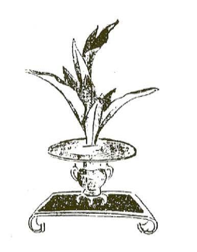 senke-arrangement