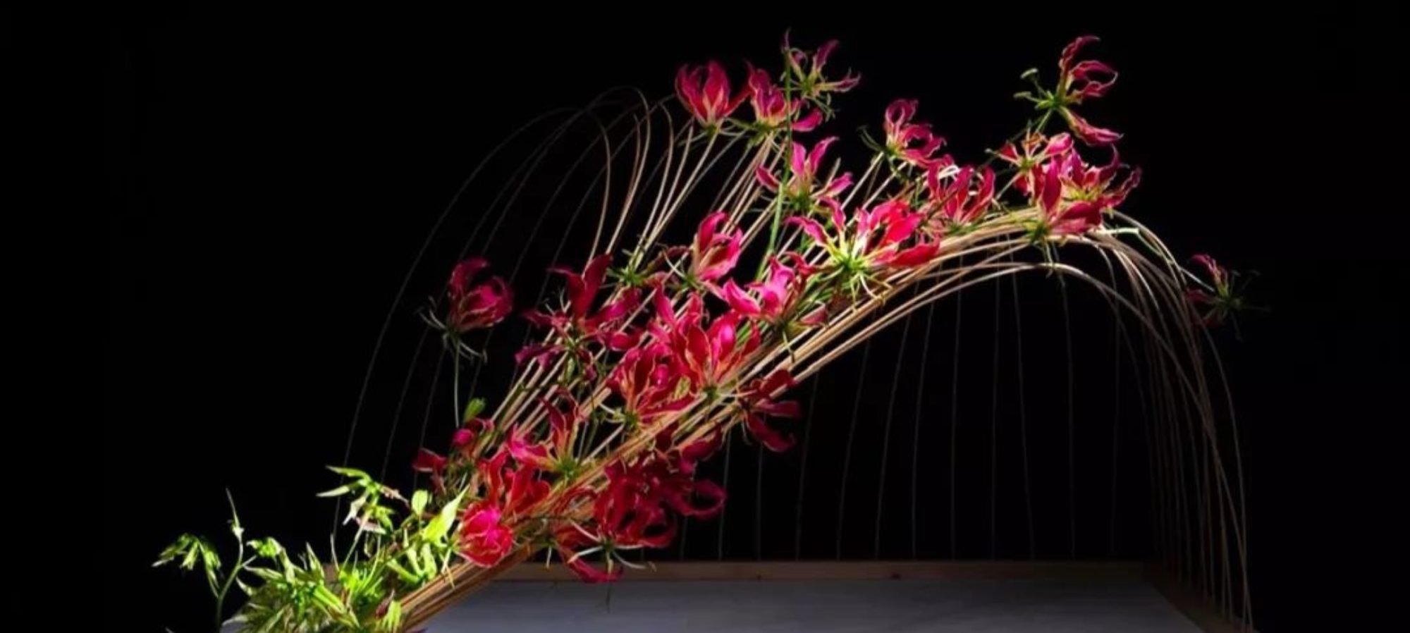 Ikebana International Chapter #65